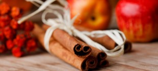 Apple Cinnamon Holiday Scents